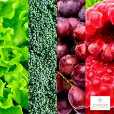 Richly colorful vegetables and fruits will help your cells function better due to their high vitamin and antioxidant content! #environ #skincare