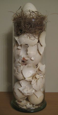 Fill a tall vase with eggshells, cover with some hay and add an egg on top … – Vase Diy Terrarium Diy, Decoration Plante, Tall Vases, Egg Shells, Ikebana, Floral Arrangements, Diy Home Decor, Glass Vase, Arts And Crafts