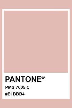 Colour Pallete, Color Palettes, Color Schemes, Pantone Matching System, Pms Colour, Material Board, Fred, Gcse Art, Colour Board