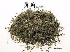 bo he - wild mint: http://kampo.ca/herbs-formulas/herbs/hakka/