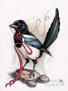Magpie with Red String by Shanti -  I don't typically predesign a tattoo to this extent, but I really wanted to practice the iridecent colors. T