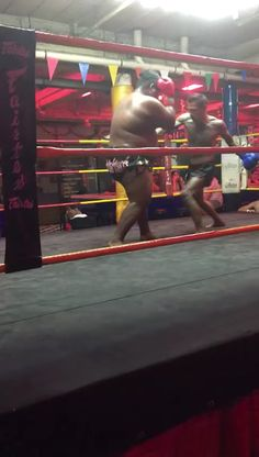Sports Discover Now thats how you KO a gummy bear Muay Thai Martial Arts, Martial Arts Workout, Martial Arts Training, Mixed Martial Arts, Boxing Training Workout, Kickboxing Workout, Self Defense Moves, Self Defense Martial Arts, Ufc Fight Videos
