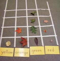 {leaf graph} all sorts of leaf lessons @ the site. (Use this for Garden, Halloween week) Forest School Activities, Classroom Activities, Learning Activities, Teaching Ideas, Teaching Art, Physical Activities, Fall Preschool, In Kindergarten, Preschool Activities