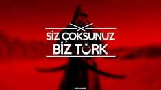 """Türkçü Sokak adına yaptığım """"Siz Çoksunuz Biz TÜRK"""" adlı çalışma"""
