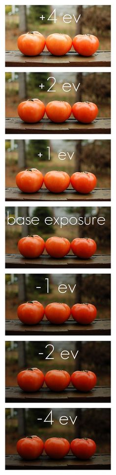 Photography Basics: Understanding Exposure