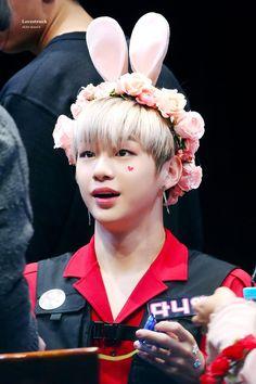 Wanna one KangDaniel Daniel K, Street Dance, Flower Boys, Kpop, Jinyoung, Photo Cards, Twitter, Squishies, Produce 101