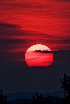 Red Moon-moon bathed in scarlet Siente, feel, texture, color, red, rojo, textura, feellings, sensaciones, sentimientos, sun, palms, moon, red moon, cloudporn, breaking, ocaso, atardecer, night, nites, noches, luna roja.