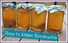 How to Make Kombucha-  Kombucha is a delicious fermented beverage made from sweetened tea. Like milk kefir and water kefir, kombucha contains beneficial yeasts and bacteria that can help improve your digestion and boost your immune system.