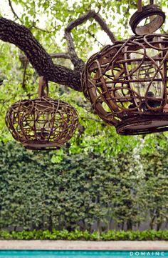 Hanging lanterns in backyard trees