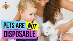 You are Responsible for a Life - Pets are Not Disposable! — Our Pets Health Getting A Puppy, Tough Love, Kittens And Puppies, Like Animals, Health Articles, Pet Health, Dog Care, Guinea Pigs, Best Dogs