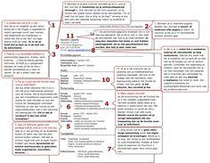 11 basis tips voor een cv