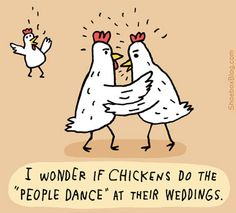 Maybe not at weddings, but I wonder about sports games. #chickendance #ih8butterflies