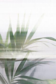 Bar Lounge, Cabinet Medical, Mood Images, Glass Texture, Restaurant Design, Store Design, Indoor Plants, Interior Architecture, Interior Design