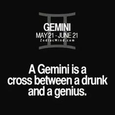 39 Trendy Funny Signs And Sayings Hilarious Facts Gemini Sign, Gemini Quotes, Gemini Love, Zodiac Signs Gemini, Zodiac Mind, My Zodiac Sign, Zodiac Facts, Taurus, Gemini Daily