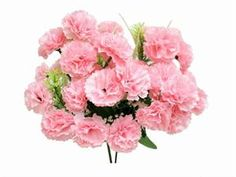 pink carnations. cheapo depot flowers.