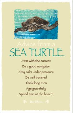 Advice from a Sea Turtle Frameable Art Postcard