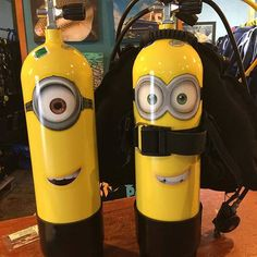 Tag a buddy who would love one of these! Photo by one of our dive shops, Dive Tutukaka