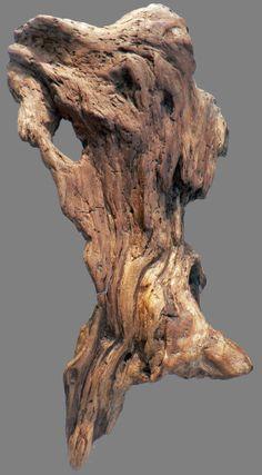 """Applique """"Venise II"""", bois flotté, driftwood, sculpture naturelle, masque, loire, Le blog de boisflottesdeloire - Sculptures naturelles -"""