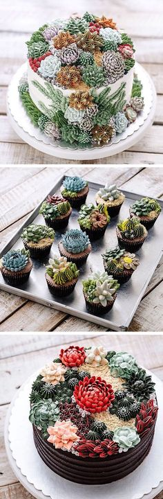 Cakes' Turn Prickly Plants into Delicious Desserts These buttercream succulent cakes and cupcakes are almost too adorable to eat! buttercream succulent cakes and cupcakes are almost too adorable to eat! Pretty Cakes, Beautiful Cakes, Amazing Cakes, Beautiful Desserts, Cake Cookies, Cupcake Cakes, Baking Cupcakes, Cupcakes Decorating, Decorating Ideas