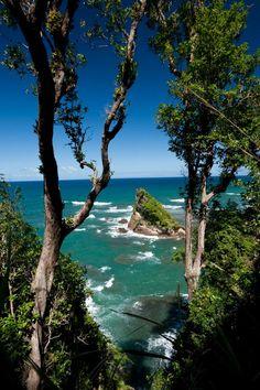Dominica  Island in the Sun - Gary Trotman @Steelasophical UK Steel band http://www.steelband.co.uk/west-indies