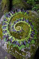 Leafy spiral jetty by Sally J. Smith