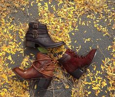 Discover new boots for fall!