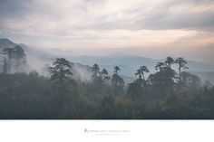"""https://flic.kr/p/HB19Rh 