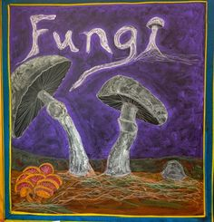 Waldorf ~ 5th grade ~ Botany ~ Fungi ~ chalkboard drawing