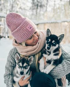 Wonderful All About The Siberian Husky Ideas. Prodigious All About The Siberian Husky Ideas. Alaskan Husky, Siberian Husky Dog, Husky Puppy, Pitbull, Cute Puppies, Cute Dogs, Husky Breeds, Rottweiler Mix, Nanny Dog
