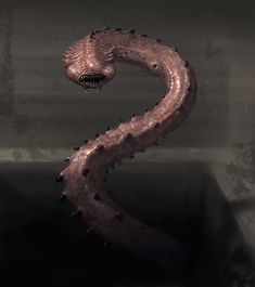 Horror Creature Concept 2 - Worm by Cloister on DeviantArt Neat and creepy critter. And no, I do not want to meet this thing in some dungeon! It looks gross, and dangerous!