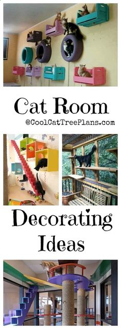 Cat room ideas for homes of all sizes, be they enormous mansions, small houses or tiny apartments. The diy ideas here can easily enhance the decor of any living spaces we mere humans occupy.
