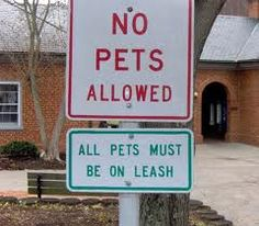 Your imaginary pets must be on leashes.  The leashes must be visible at all times.