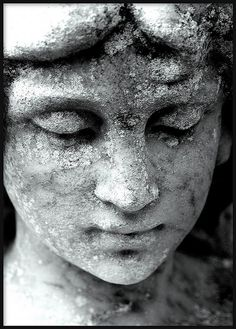 ANGEL FACE by brynmeillion - JAN, via Flickr