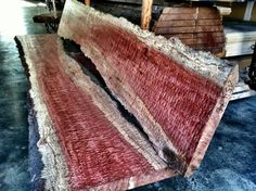 Thinking about Learning Woodworking? Learn Woodworking, Woodworking Projects, Got Wood, Into The Woods, Live Edge Wood, Wood Slab, Types Of Wood, Wood Species, Wood Grain