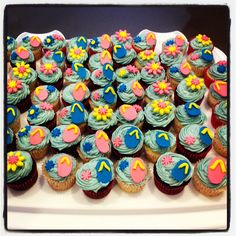 Pool party mini cupcakes
