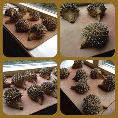 Autumn Kids Craft; Hedgehogs from Clay and Sunflower Seeds. •°•°• Herfst Kinder Knutsel; Egeltjes van klei en zonnebloempitten