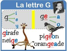 orth : la lettre G French Language Lessons, French Language Learning, French Expressions, French Classroom, French Resources, Phonemic Awareness, Teaching French, Letter Sounds, School Resources