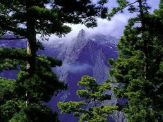 La Palma. Canary Islands  I want to live there for a little while