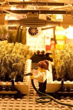 Lego grow operation... cool  Re-pinned by SativaMagazine.com