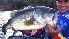 Fishing Tips, App, Apps