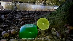 Tea tree and lime let the razor blades glide. Soap Company, Tea Tree, Soap Making, Lime, Natural, Handmade, Limes, Hand Made, Craft