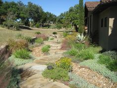 Texas Style Front Yard Landscaping Ideas 32 Rockindeco- - All For Garden Landscaping On A Hill, Natural Landscaping, Country Landscaping, Landscaping Ideas, Mulch Ideas, Landscaping Borders, Driveway Landscaping, Landscaping Austin, Acreage Landscaping