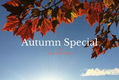 Feeling those holiday blues?  As the holiday season winds down we are seeing a lot of people feeling those holiday blues.  Well, we have the perfect cure, why not book a few nights away this Autumn and unwind at Liss Ard Estate with Bed & Breakfast from as little as €49 per person!  #autumn #promotion #getaway #specialoffer #lissardestate #westcork #wildatlanticway #travel #experience #relax