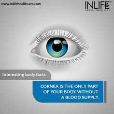 Here is an interesting body fact we are sure you didn't know about! #BodyFacts #Cornea #Facts #Eyes
