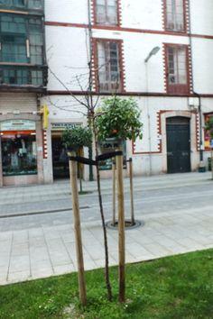 Por las calles de Llanes, Concejo de Llanes. Principado de Asturias. Spain. [By Valentin Enrique].