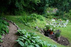 stenröse trädgård - Sök på Google