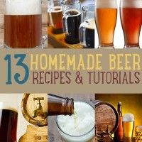 Let's face it, many people think beer is just beer. But let's also be real here, people, there's different strokes for different folks! There are countless kinds of beers, all equipped with different flavors, textures, aromas and alcohol contents. This post will definitely encourage you present beer lovers to hop on the home