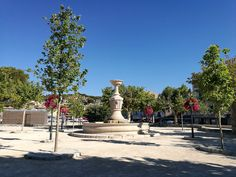 Popular summer resort in the beautiful location of the Parc National des Calanques situated 40 minutes drive to the east of Marseille is well worth the trip. Parc National, France Travel, Statue Of Liberty, Travel Guide, Costa, French, Explore, Beauty, Beautiful