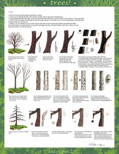 How to draw trees. A really neat tutorial in 3 parts. Part 2 by ~calisto-lynn on deviantART