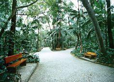 50 Lugares BARATOS para sair em São Paulo e impressionar (GUIA DEFINITIVO)